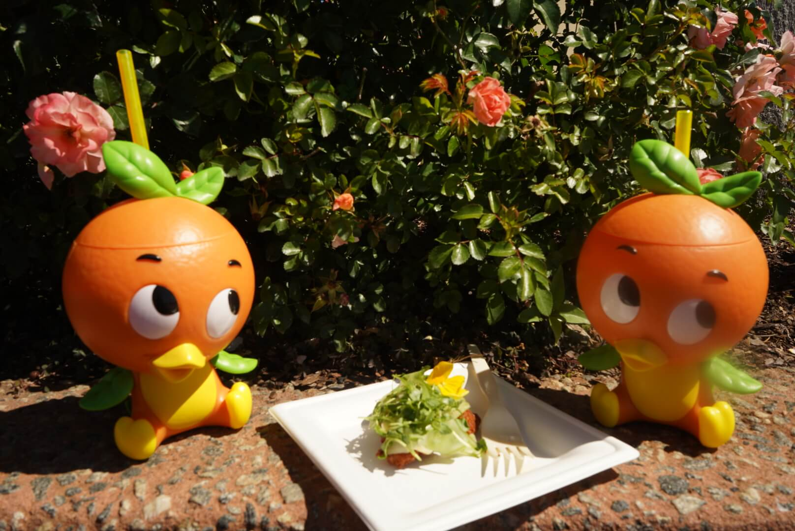 Orange Bird Sipper and Orange Crispy Citrus Chicken Aioli at Epcot Flower and Garden Festival 2019