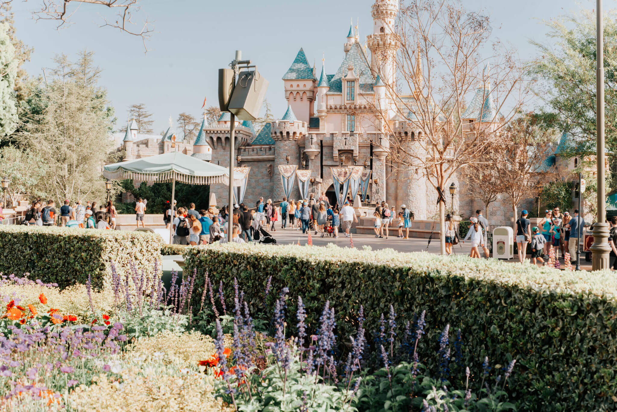 Disneyland Sleeping Beauty Castle with pink filter and flowers in spring