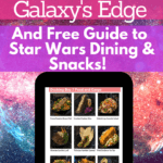 Easy Guide to Star Wars: Galaxy's Edge and Dining Guide
