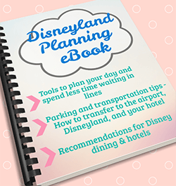 Disneyland for Beginners Planning eBook from Theme Parks for Grown-Ups