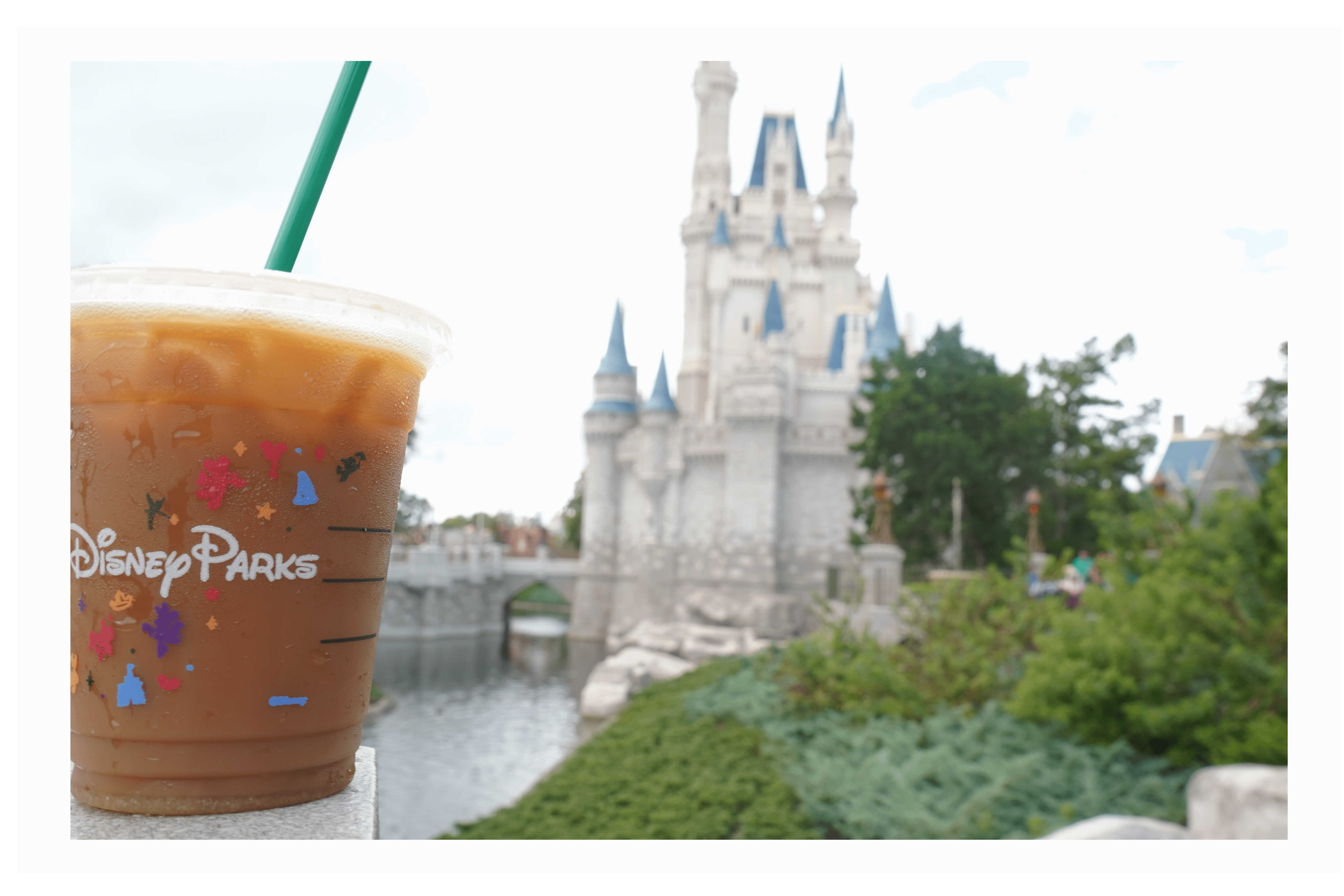 Starbucks iced coffee in front of cinderella castle in Disney World